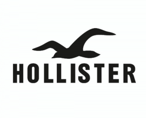 Hollister Co discount